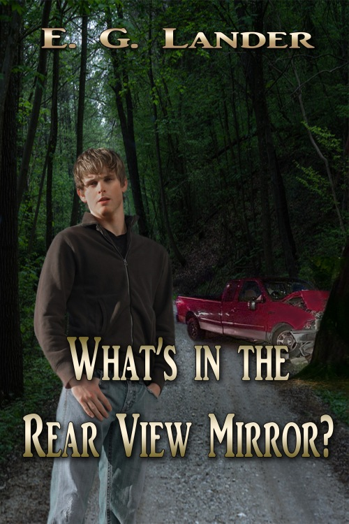 Whats in the Rear View Mirror Cover